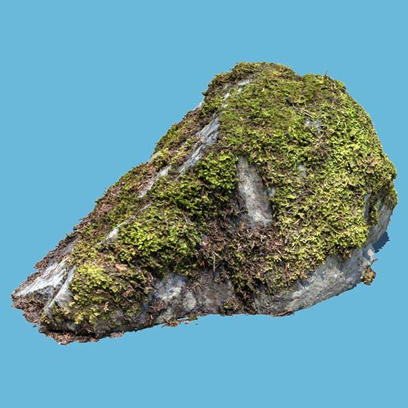 Kate Moss Rock
