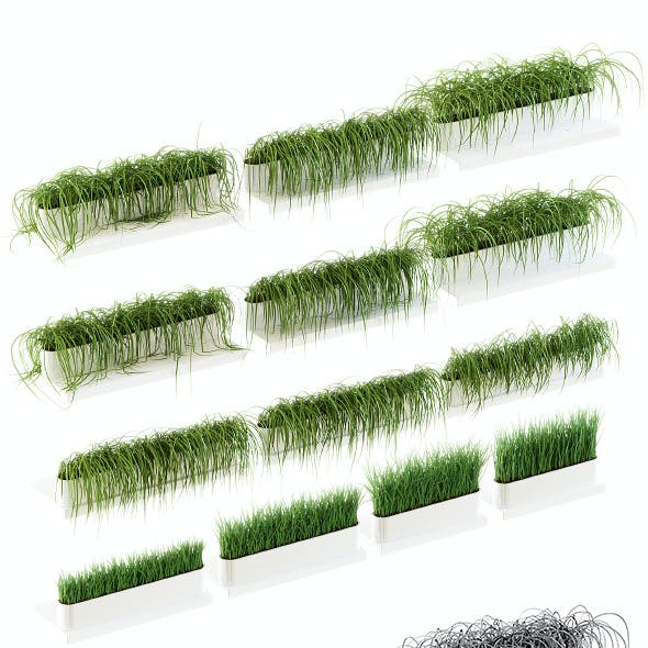 Grass on the shelves of 13 models