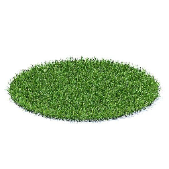 Short Grass 3D Model