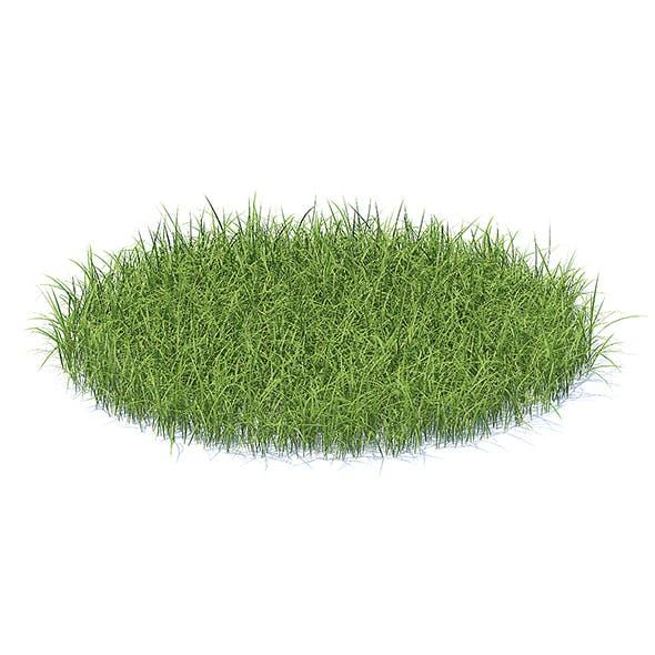 grass 3d model free download maya