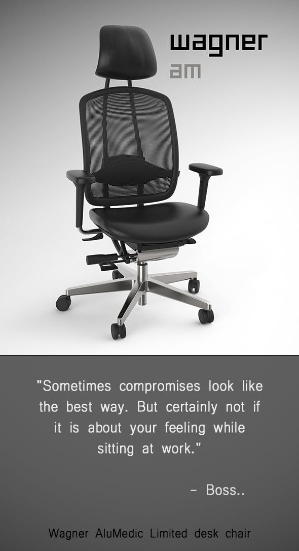 Wagner AluMedic Limited Office Chair - 3DOcean Item for Sale