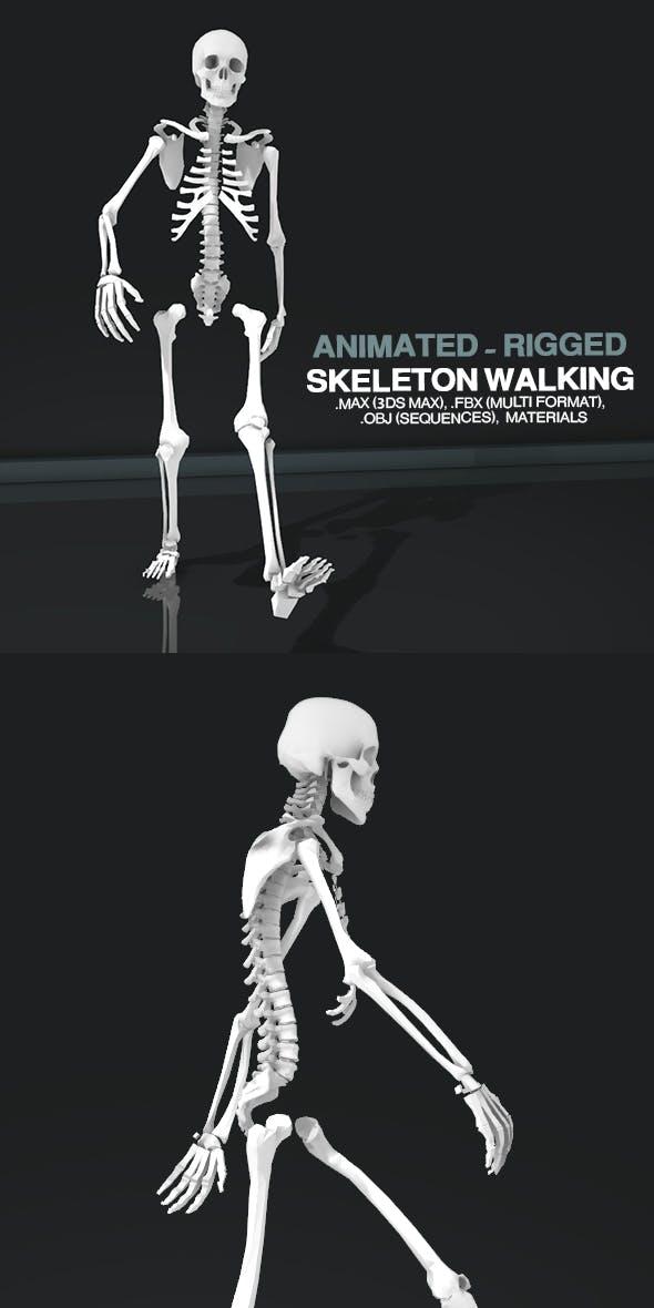 Skeleton Walking - 3DOcean Item for Sale