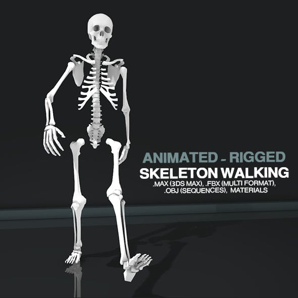 Skeleton Walking