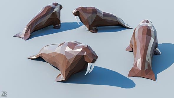 Lowpoly Walrus 001 - 3DOcean Item for Sale