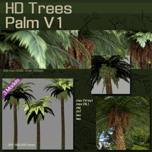 HD Trees :  Palm V1