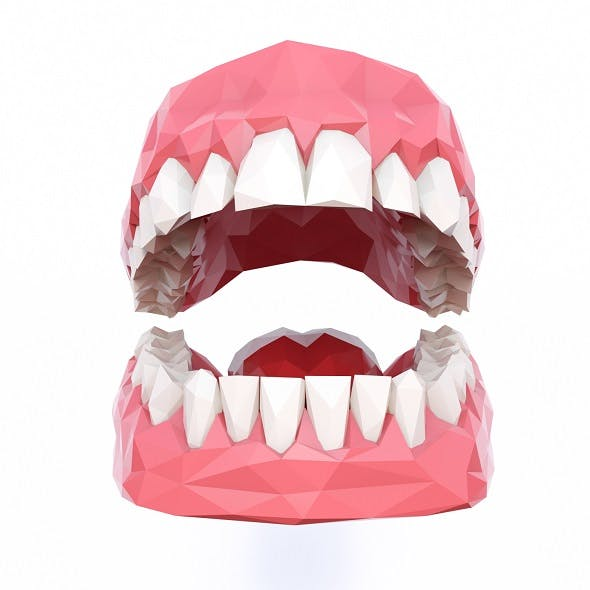 Teeth Low Poly