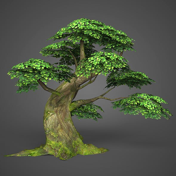 Game Ready Low Poly Tree 06