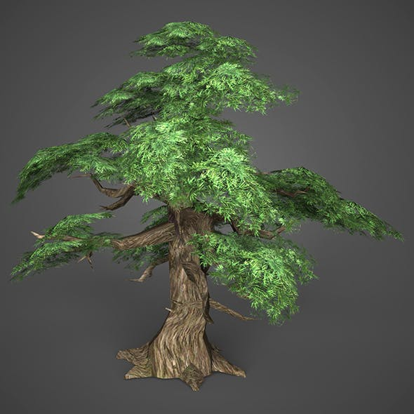 Game Ready Low Poly Tree 12 - 3DOcean Item for Sale