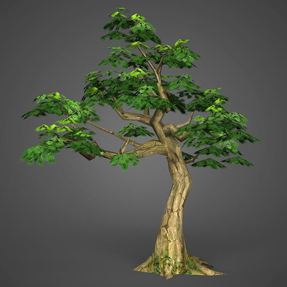 Game Ready Low Poly Tree 13