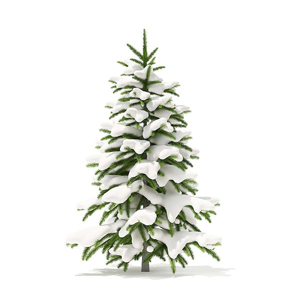 Fir Tree with Snow 3D Model 1.2m - 3DOcean Item for Sale