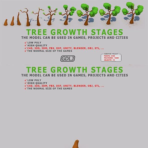 Tree Low Poly