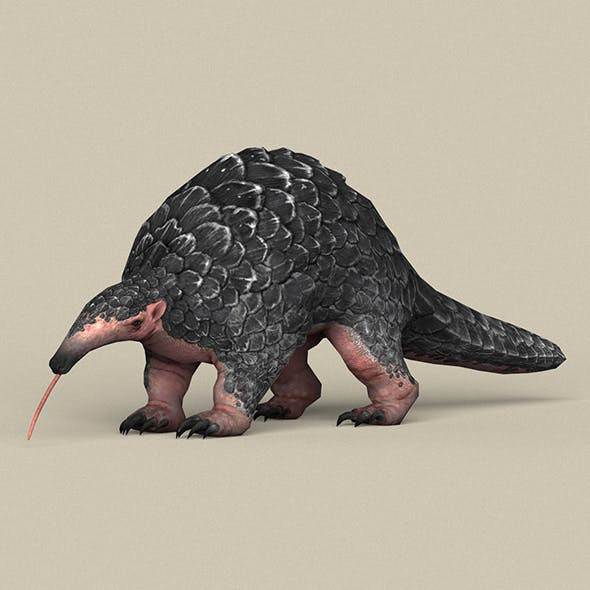 Game Ready Pangolin - 3DOcean Item for Sale