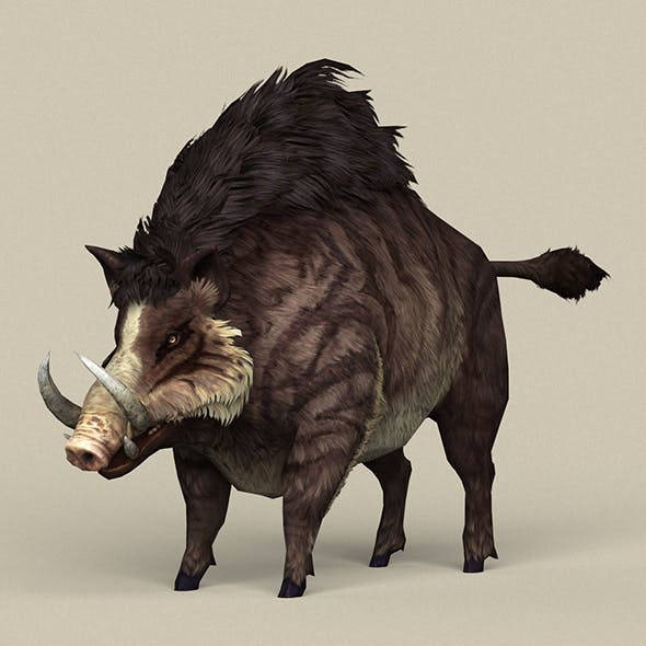 Game Ready Fantasy Boar - 3DOcean Item for Sale