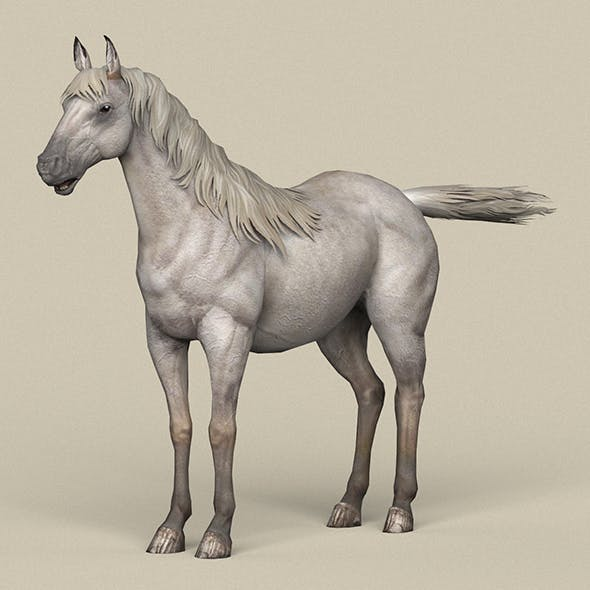 Game Ready White Horse - 3DOcean Item for Sale