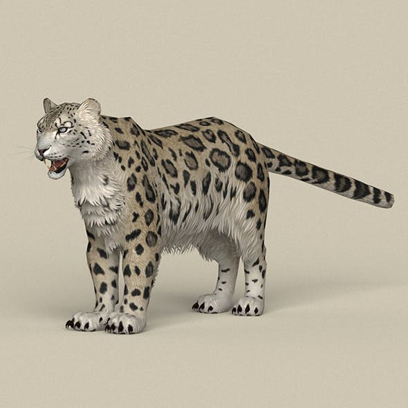 Game Ready Snow Leopard
