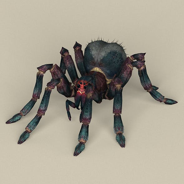 Game Ready Spider - 3DOcean Item for Sale