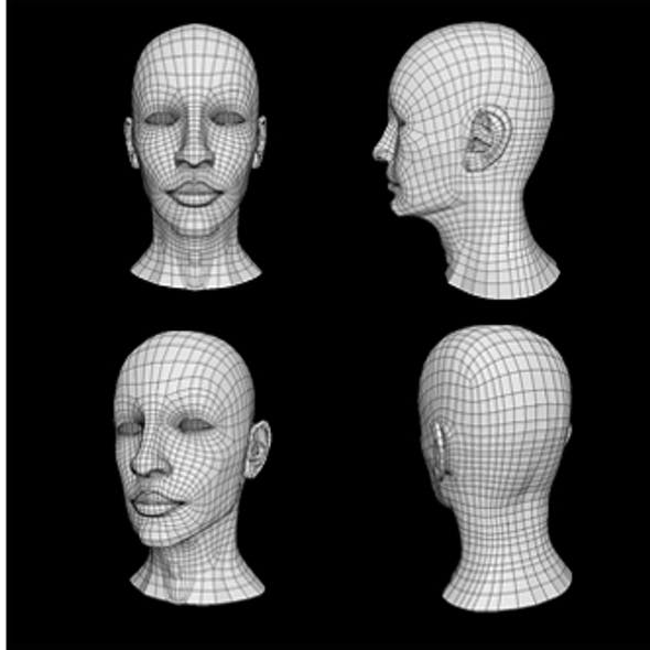 Human Male Head Low Poly Base Mesh