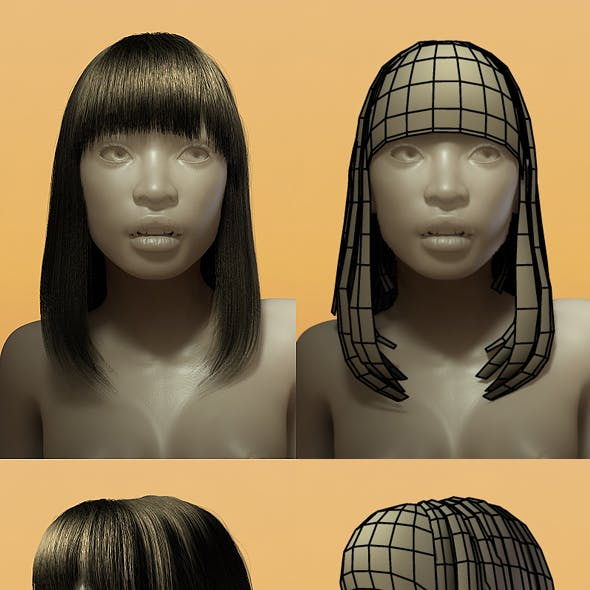 Female Hair Style 001