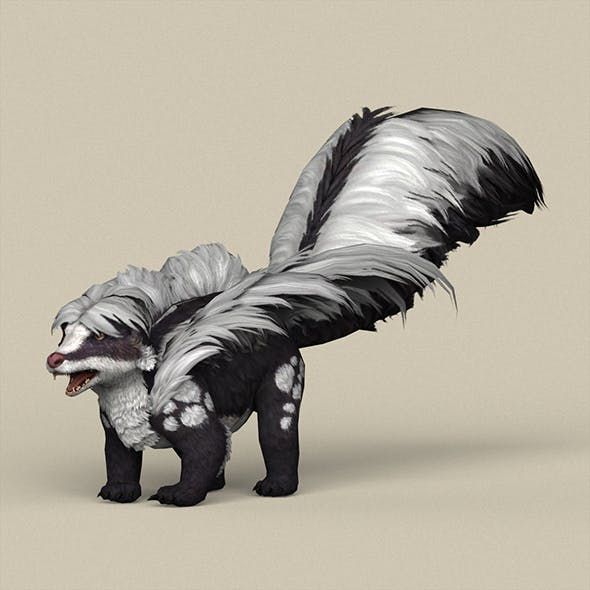 Game Ready Animal Skunk - 3DOcean Item for Sale
