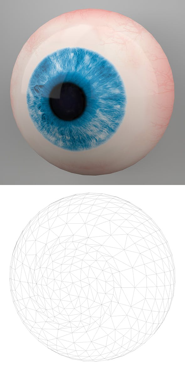 Human Eye 3D Model - 3DOcean Item for Sale