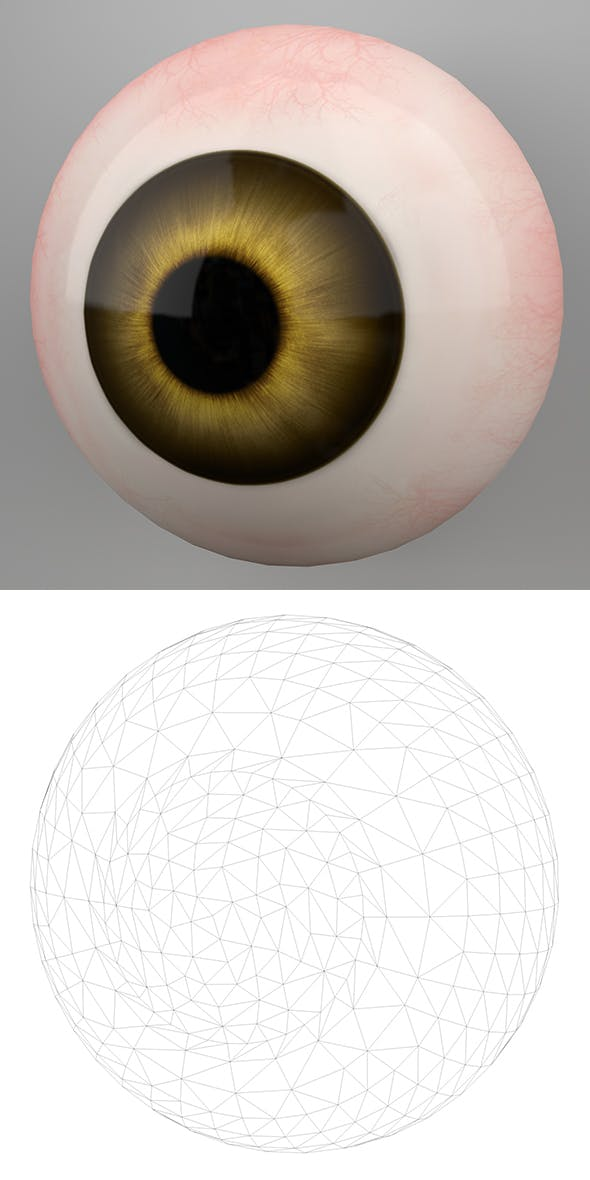 Human Eye 3DModel - 3DOcean Item for Sale