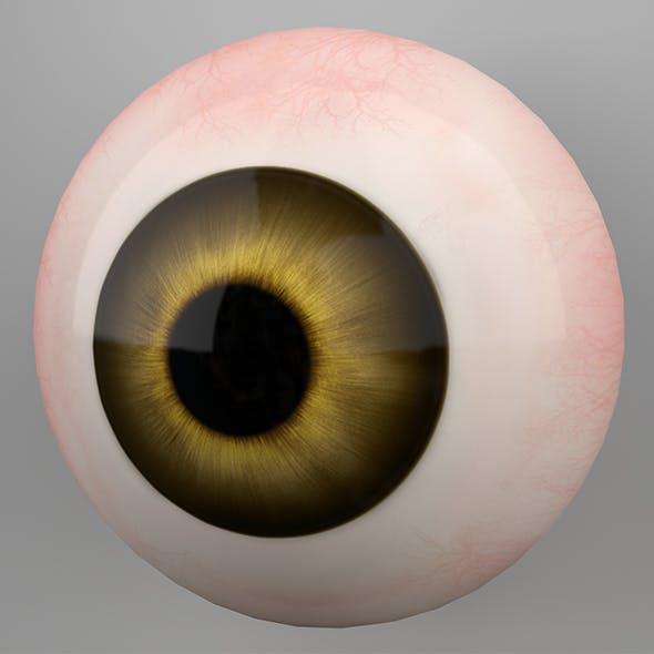 Human Eye 3DModel