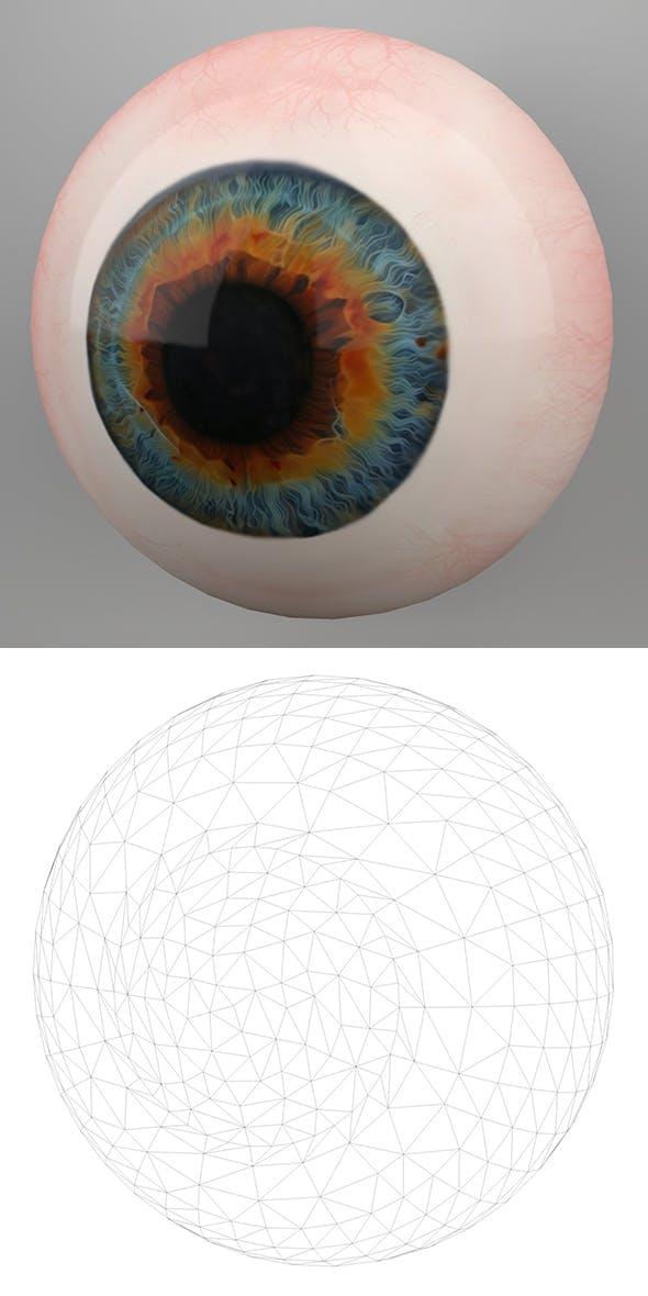 Human Eye 3D Model - 3DOcean Item for Sale