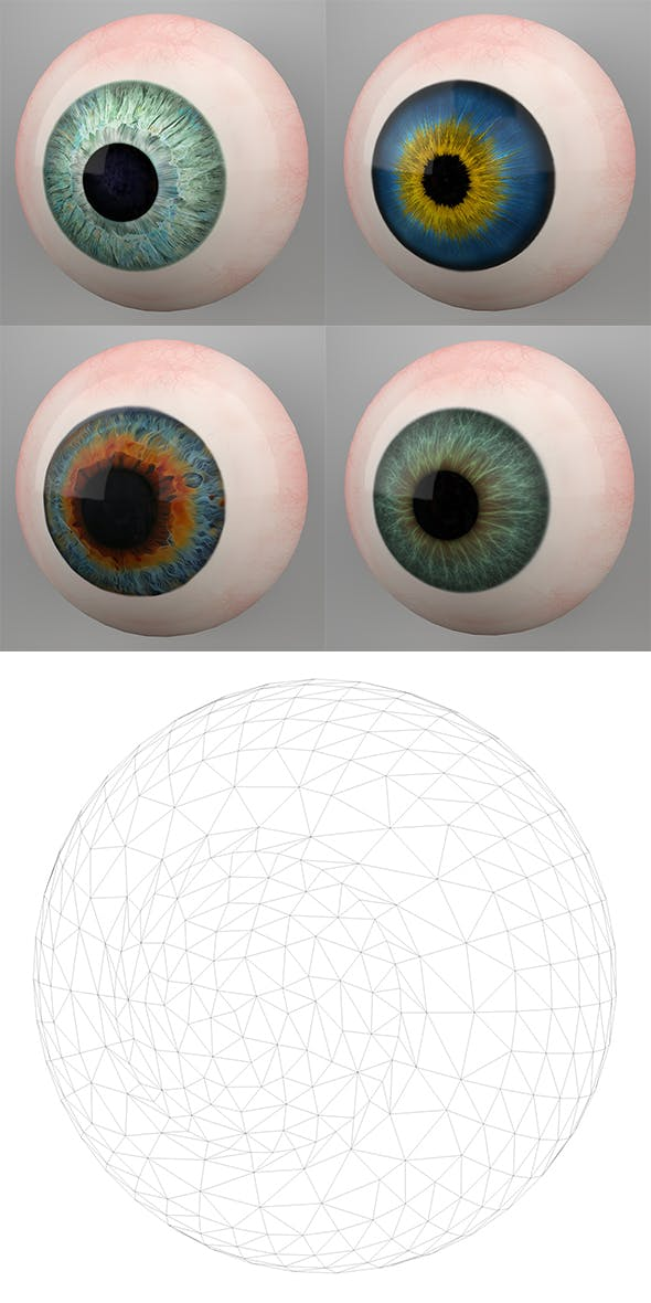 Human Eyes 3D Models - 3DOcean Item for Sale