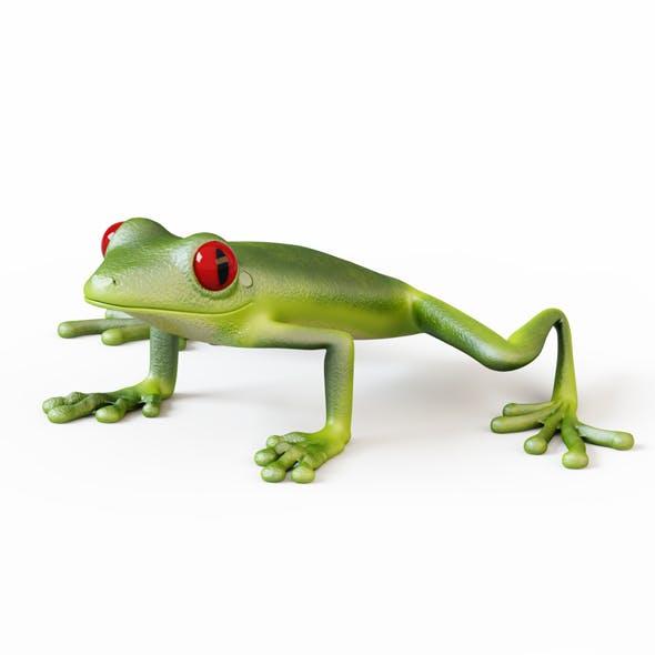 Frog - 3DOcean Item for Sale