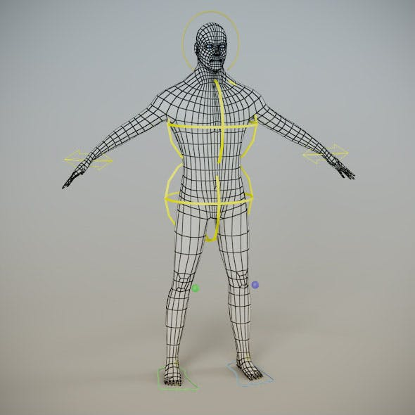 Low Poly Male Mesh ( Human Rig )