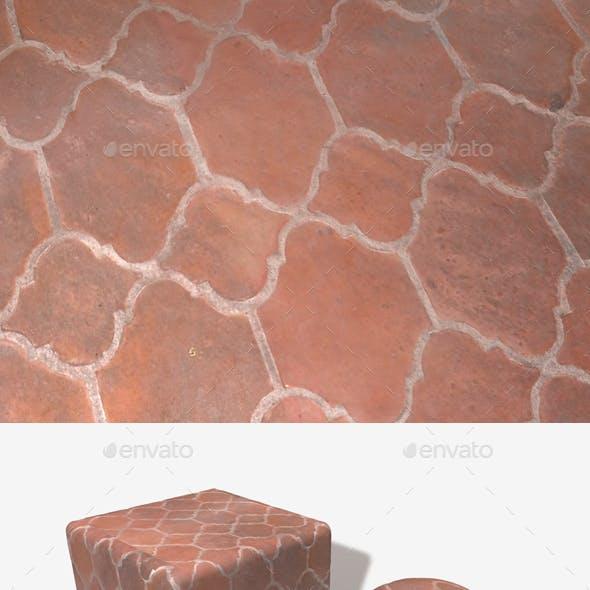 Fancy Terracotta Floor Tiles Seamless Texture