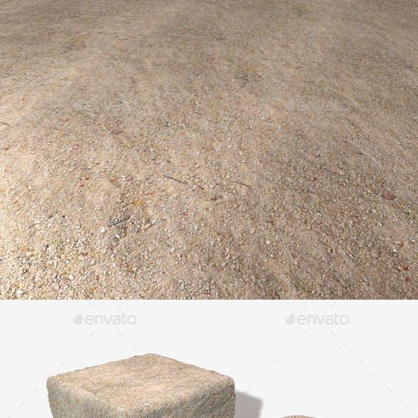 Desert Ground with Petals Seamless Texture