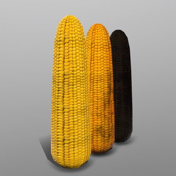 Corn - 3DOcean Item for Sale