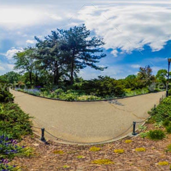Natural HDRI Environment: Flower Garden