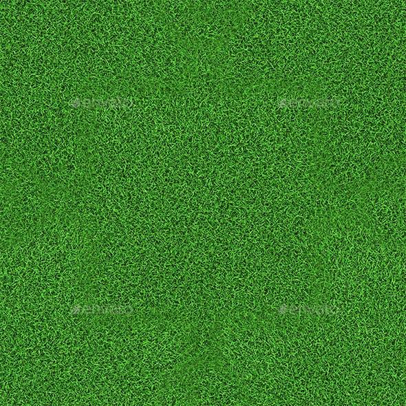Grass Hi-Res Texture 01 (Tileable)
