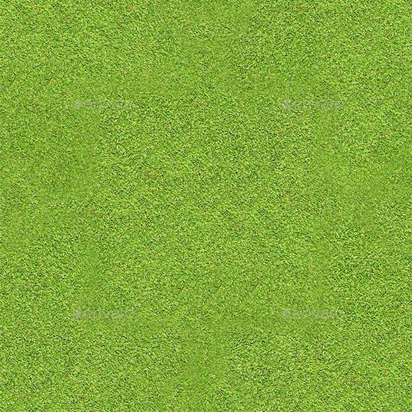 Grass Hi-Res Texture 02 (Tileable)