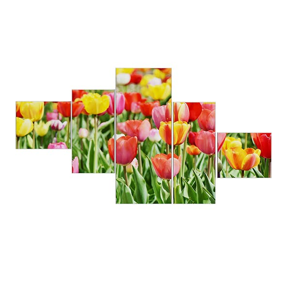 Flower Wall Pictures 3D Model
