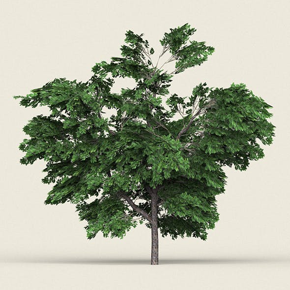Game Ready Forest Tree 01