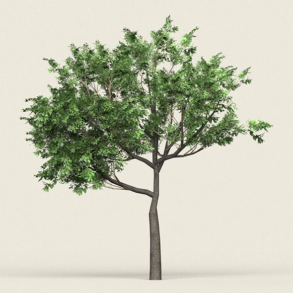 Game Ready Forest Tree 02