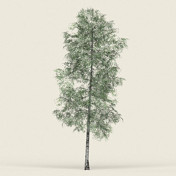 Game Ready Forest Tree 09 - 3DOcean Item for Sale