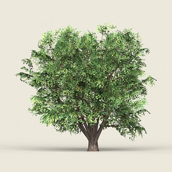 Game Ready Forest Tree 11 - 3DOcean Item for Sale