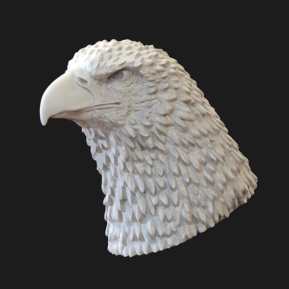 Eagle head 3D print model - 3DOcean Item for Sale