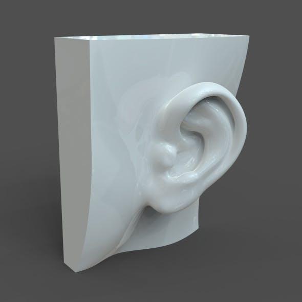 CAD-friendly solid body Woman Ear Model F1P1D0V1ear