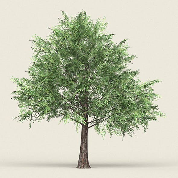 Game Ready Forest Tree 12 - 3DOcean Item for Sale