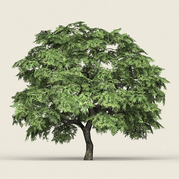 Game Ready Forest Tree 14 - 3DOcean Item for Sale