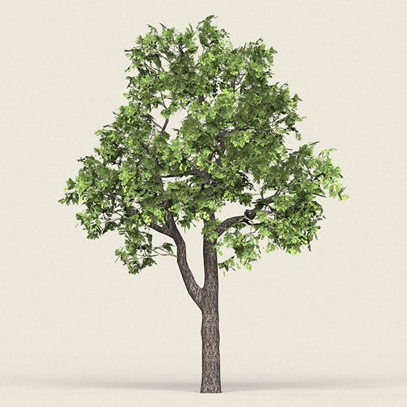Game Ready Forest Tree 16 - 3DOcean Item for Sale