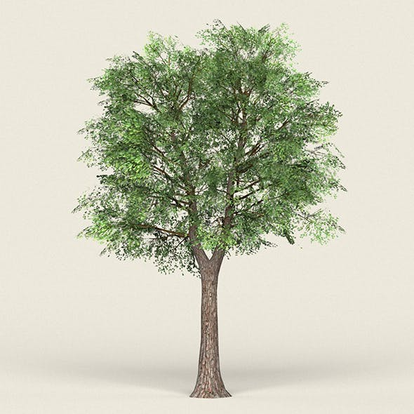 Game Ready Forest Tree 19