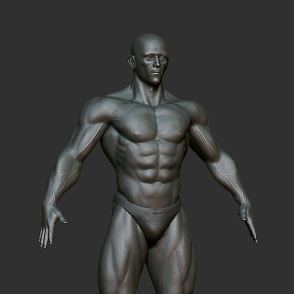 Muscular Man  Zbrush Sculpt