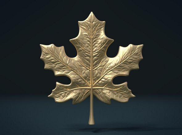 Maple Leaf - 3DOcean Item for Sale