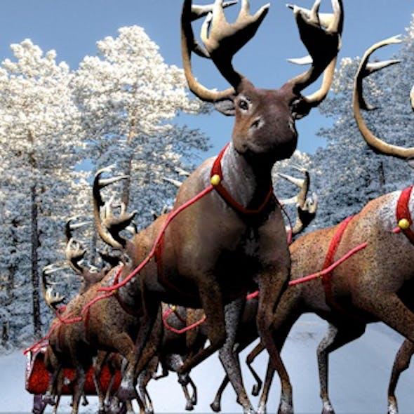 Santa Claus,reindeer 3d model.